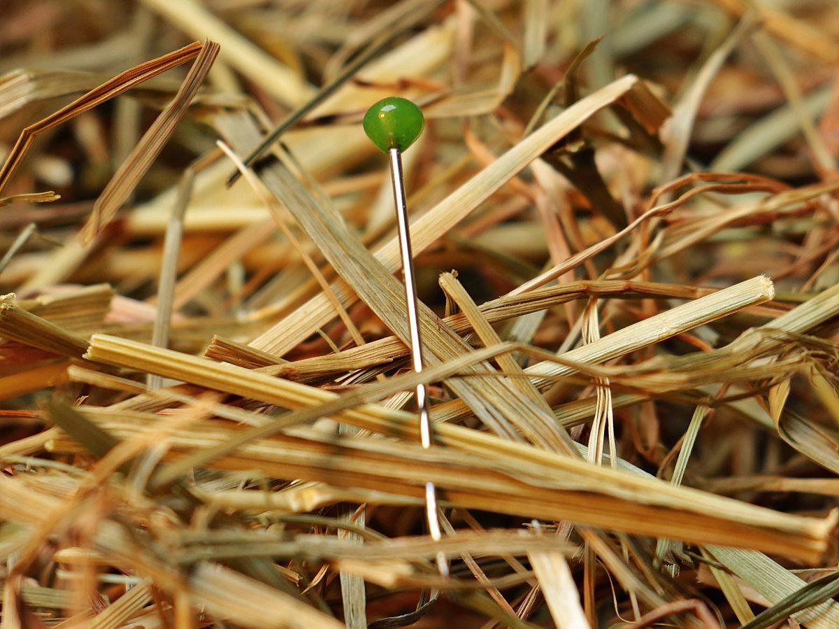 needle in a haystack, needle, haystack